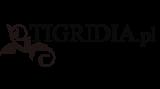 tigridia_big